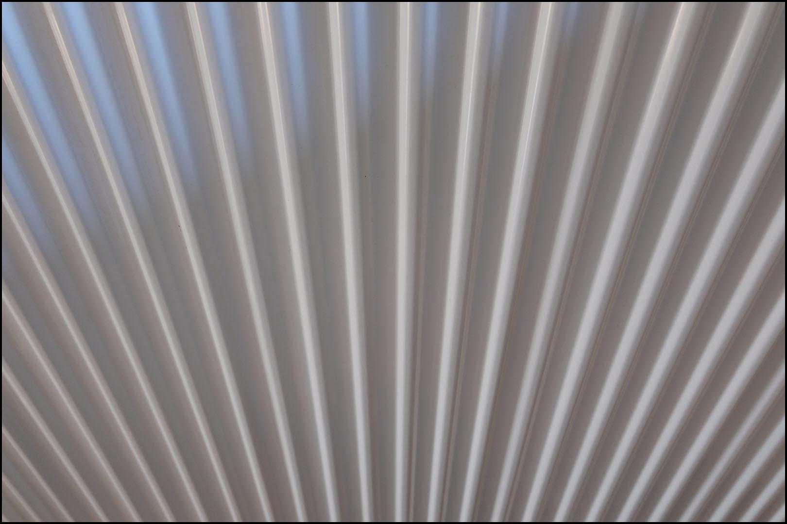 Fan Shape