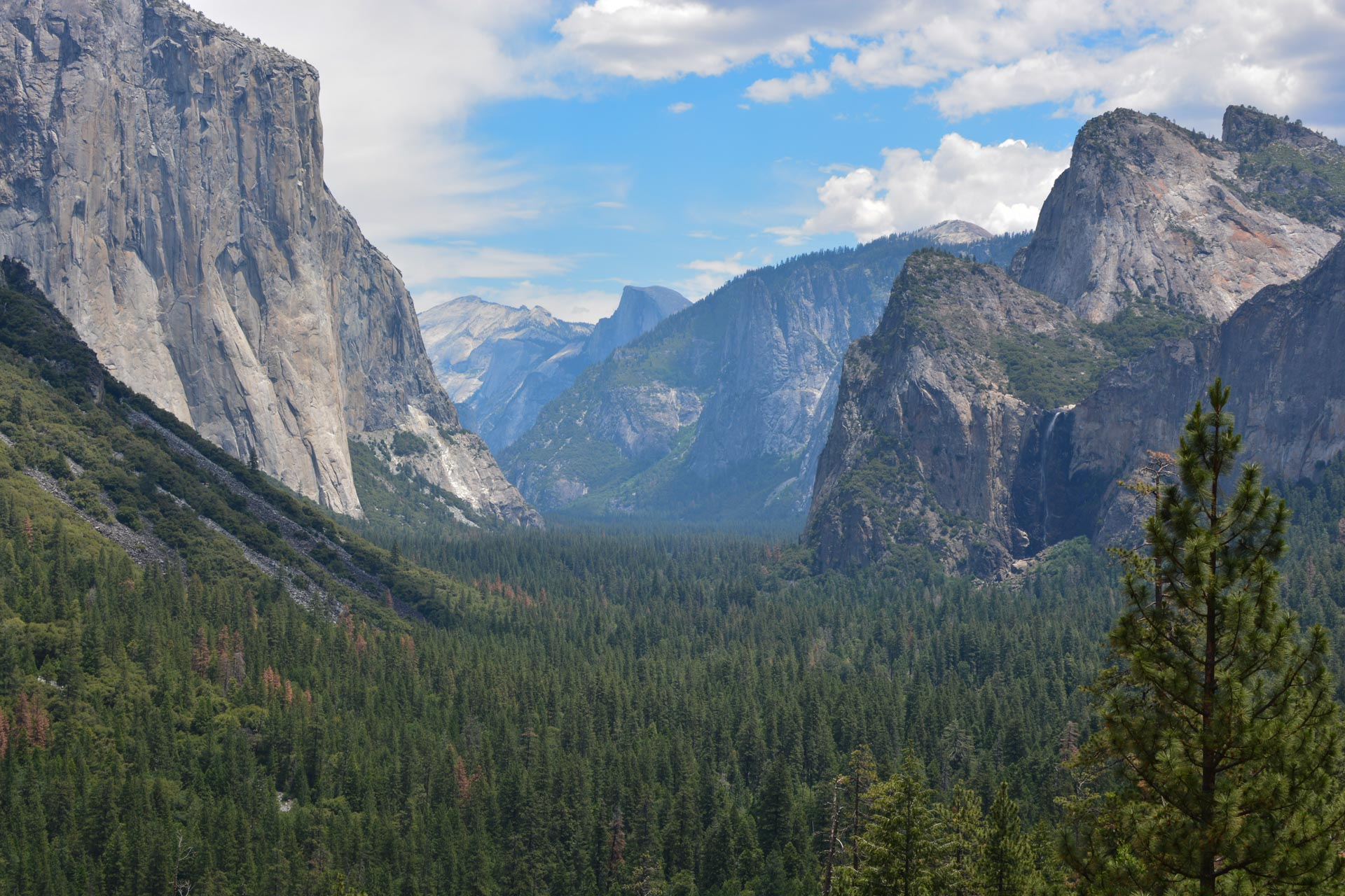 "Linda Johnson - ""Yosemite"""